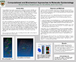 Computational and Biochemical Approaches to Molecular Epidemiology